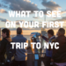 What to See On Your First Trip to NYC